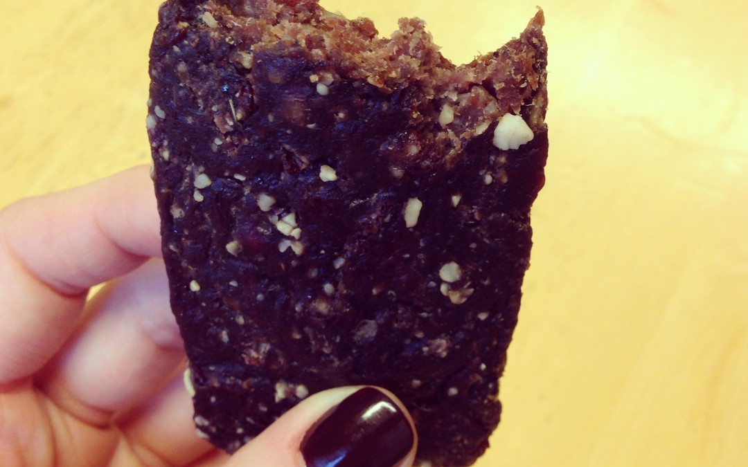 Recipe: Homemade Epic Bars (Low Sugar Meat Protein Bars)