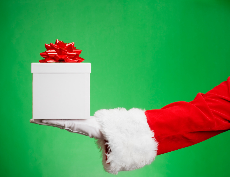 Your Paleo Christmas Gift Guide for 2013